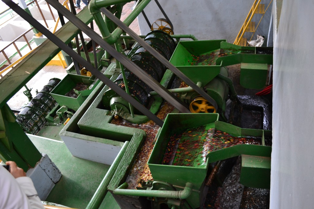 Electric Berry crusher